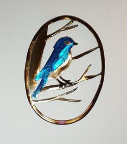 Lil Bluebird in a Maple