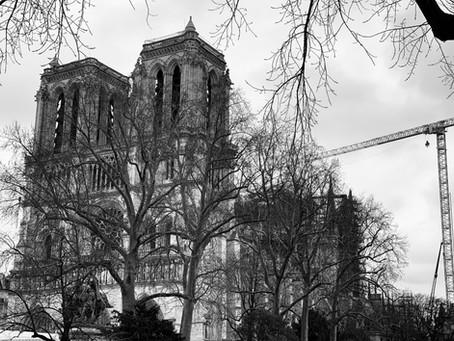 Restaurons Notre-Dame : Newsletter N°4 (février 2020) : les huit informations à retenir