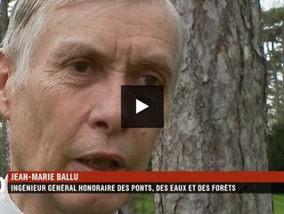 """Forêt : la presse relaie massivement """"le paradoxe français"""" exposé par Jean-Marie BALLU à"""