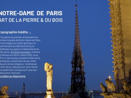 L'expographie inédite : Notre-Dame de Paris, Art de la Pierre et du Bois