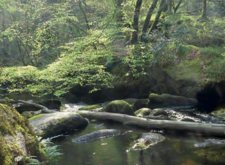 Histoire des forêts françaises : de la gaule chevelue à nos jours
