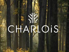 Le Fonds Charlois pour l'Art et la Forêt partenaire de Restaurons Notre-Dame