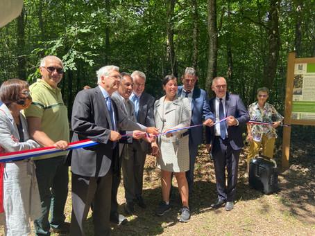 Les «Futaies Notre-Dame» officiellement lancées par Anne-Laure Cattelot en forêt des Bertranges