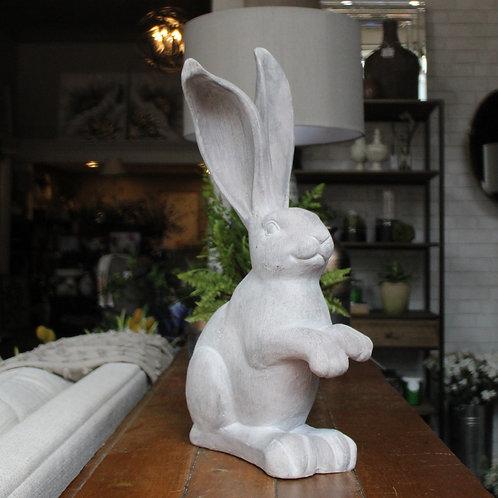 Rabbit- Standing