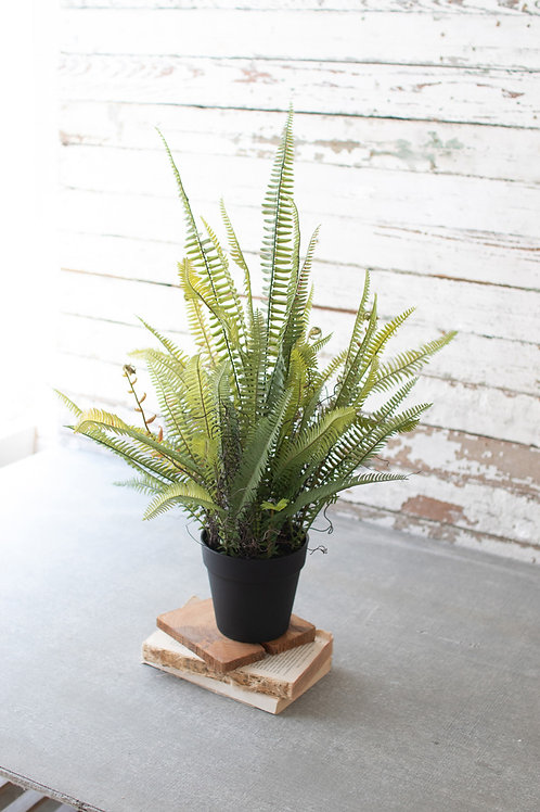 Artifical Potted Boston Fern