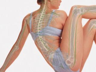 Saúde óssea: muito além do cálcio!
