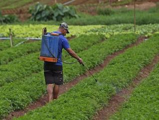 Impacto social e na saúde do uso de agrotóxicos