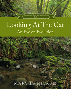 Cat Book Cover FRONT