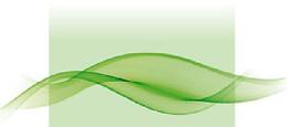 Palliative-Care-Logo-nurfarbe.png