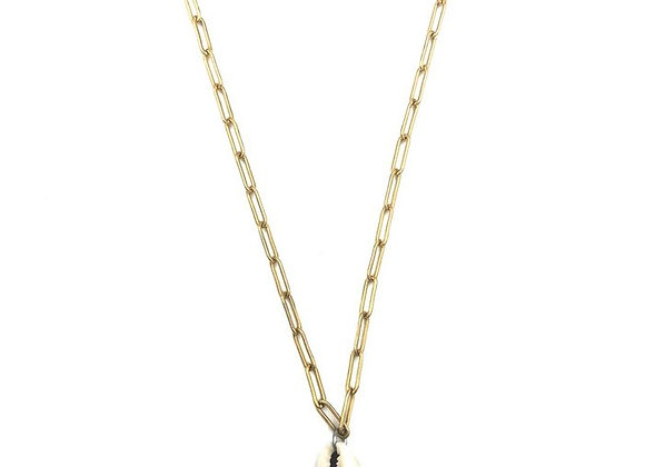 Necklace- Chain Shell Gold