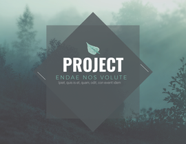 Project Booklet