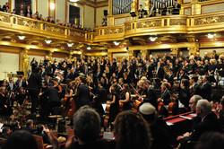 Grosser Saal Wiener Musikverein