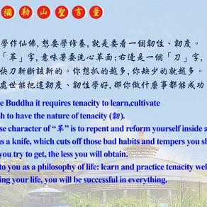 ✨20210429 An Dong Maitreya Hill morning lesson
