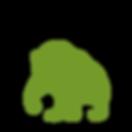 bears_Bear-3.png