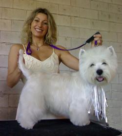 Peluqueria Canina arreglo Boda