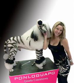 Peluqueria canina Ponloguapo Zebra