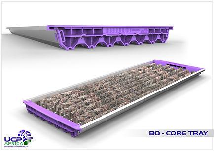 BQ Tray - 02.jpg
