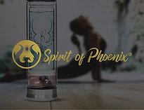 Spirit logo for my website.jpg