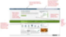 Interface Insights.JPG