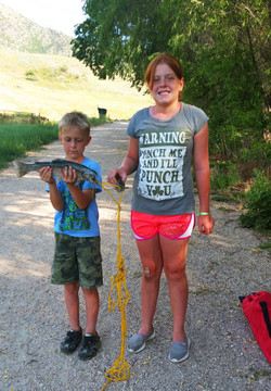 Mantua Fishing