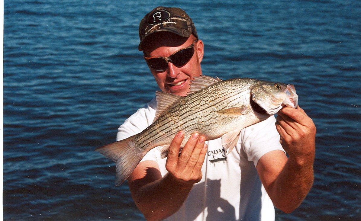 Wiper Fishing