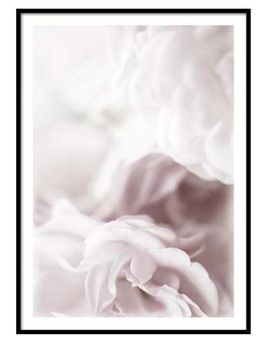 Scandinavian Poster Frame Rose