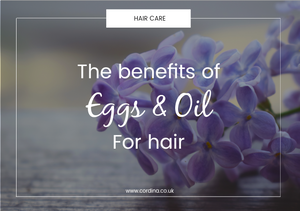 benefits of eggs and oil for hair