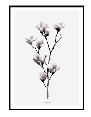 Scandinavian Poster Frame Flower .