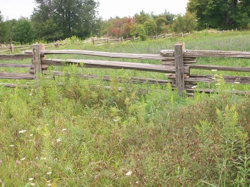 Split Cedar Rail