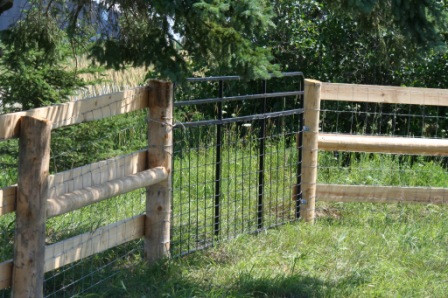 3 Board Oak with Page Wire & Custom Steel Gates