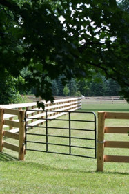 4 Board Oak with Custom Steel Gates