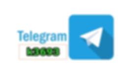 텔레그램.jpg
