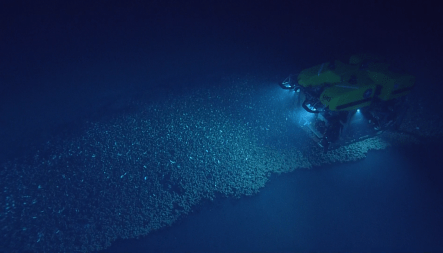 What's the difference between an AUV and a ROV?