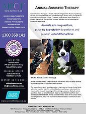 MPOT-BRO-026-1-MPOTAF Animal-Assisted Th