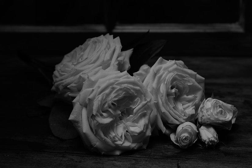 Roses On Wood still life
