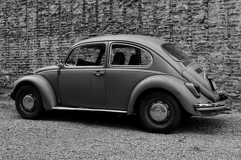 Vintage Beetle
