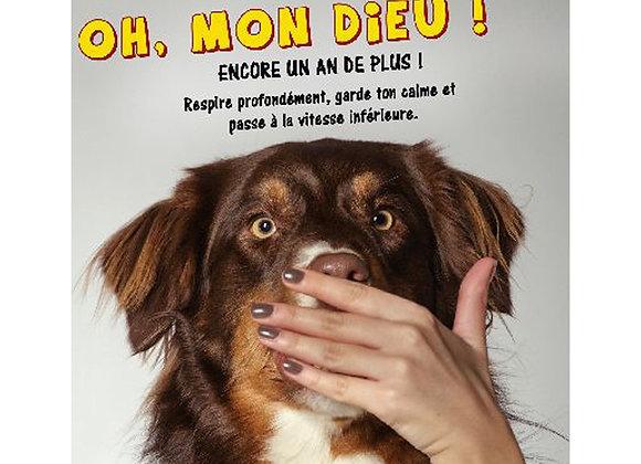 Carte Humour Anniversaire   / ROKA CONCEPTS - BOUTIQUE CADEAUX INSOLITE - YVERDON-LES-BAINS