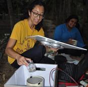 Melissa Lopez running Optomotor Assay