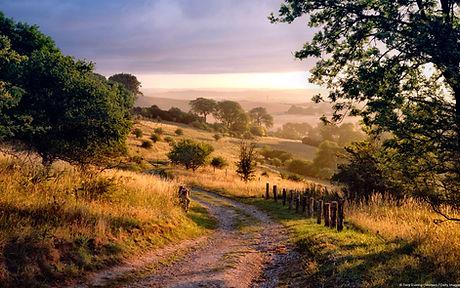 Chiltern Hills, England, UK.jpg