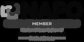 NAPO-National-Association-Productivity-O