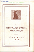 cover yb 1938.png