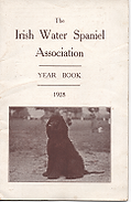 cover YB 1928.png