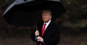 """Трамп будет добивать своих оппонентов-демократов: одной """"оплеухой"""" он не ограничится"""