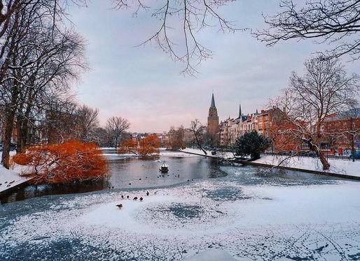 4 compléments indispensables pour passer à travers les maladies de cet hiver