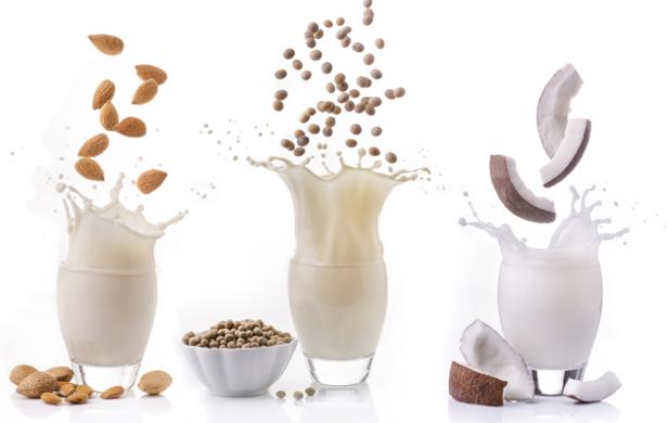 Lait végétal coco, amandes, soja, noix ils sont une parfaite alternatives au lait de vache