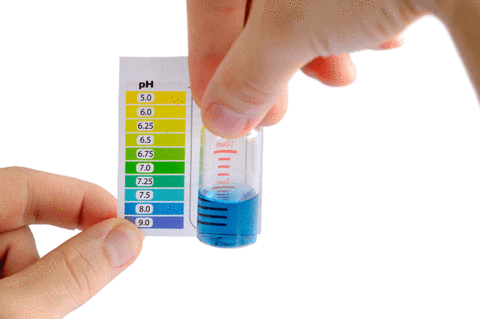 Le corps acide: comment le dépister, traiter et prévenir?