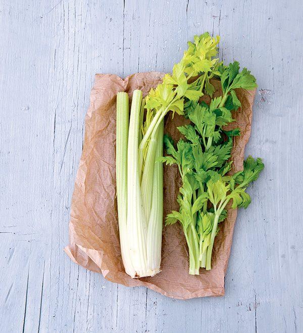 céleri, céleri-branche, légumes, saison, hiver, Bruxelles, Belgique, nourriture, nutrition,