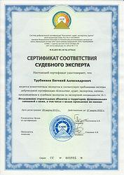 Сертификат 16.1 Трубников ЕА.jpg
