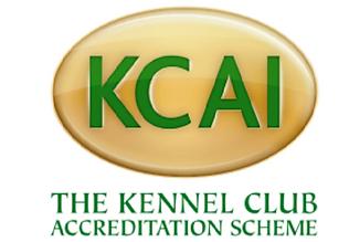 kcai logo.png