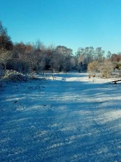 winter snows 2.jpg